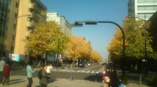 20101127130839.jpg